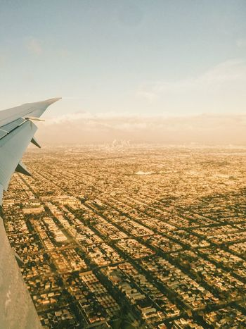 Aerial View Flying Mid-air Airplane Aircraft Wing Sky Journey Cityscape Los Angeles, California Metropolis Golden Cityscape View From Above View From An Airplane City View  City Vibes Flying High