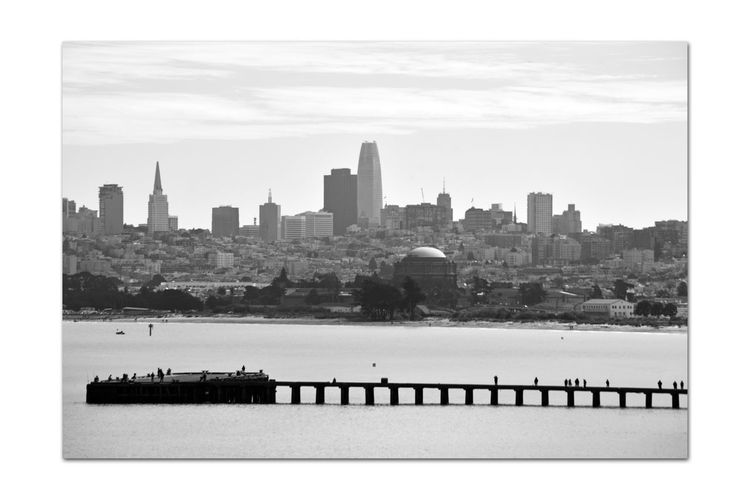 Torpedo Wharf 3 San Francisco CA🇺🇸 The Presidio Torpedo Wharf Pier People On The Pier Cityscape Skyscrapers Dome Palace Of The Fine Arts Waterfront♥ Bnw_friday_eyeemchallenge Bnw_pier Urban Photography Monochrome Lovers Monochrome Black & White Black & White Photography Black And White Black And White Collection  Bayview Nature In The City Landscape_Collection Beach SF Marina District Coastline City Urban Skyline Sky Architecture Financial District