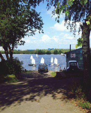 River Children Training Sport Water Ships Yacht Plant Sunlight Transportation Outdoors