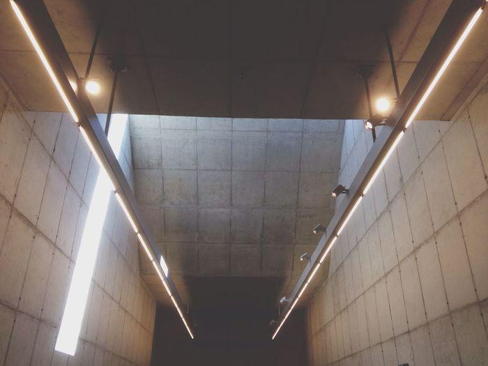 Celing Lights Lamp