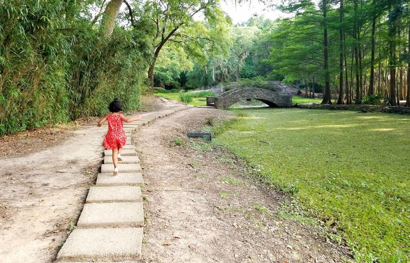 A Run Through The Woods Jungle Gardens Little Girl In Red Running In The Park The Great Outdoors - 2017 EyeEm Awards The Week On EyeEm Been There. Done That. Connected By Travel Connected By Travel Lost In The Landscape Fashion Stories An Eye For Travel Inner Power