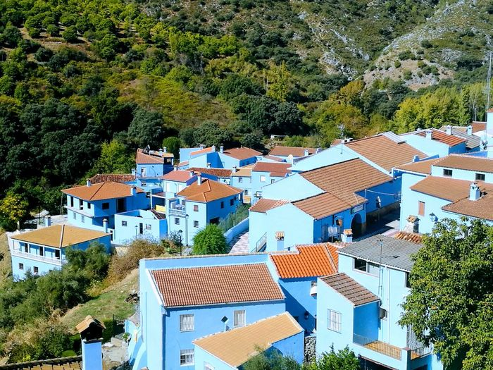 Architecture High Angle View Roof Building Exterior Tree Town Built Structure House No People Day Outdoors Tiled Roof  Nature Blue Village