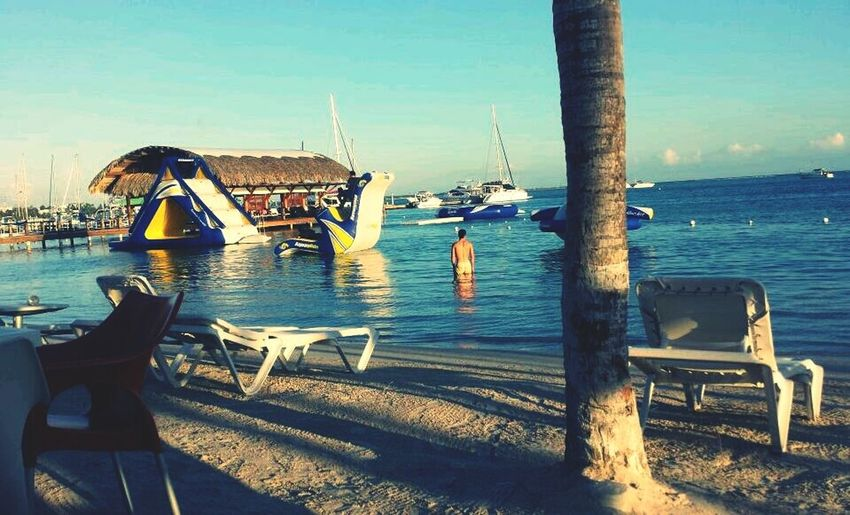 Tropical Paradise Beach Life Dominican Republic