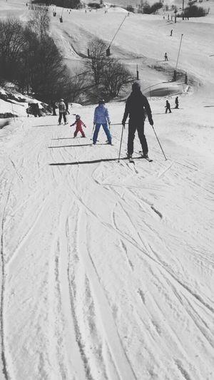 Skiing Paysage 2015  Dalton