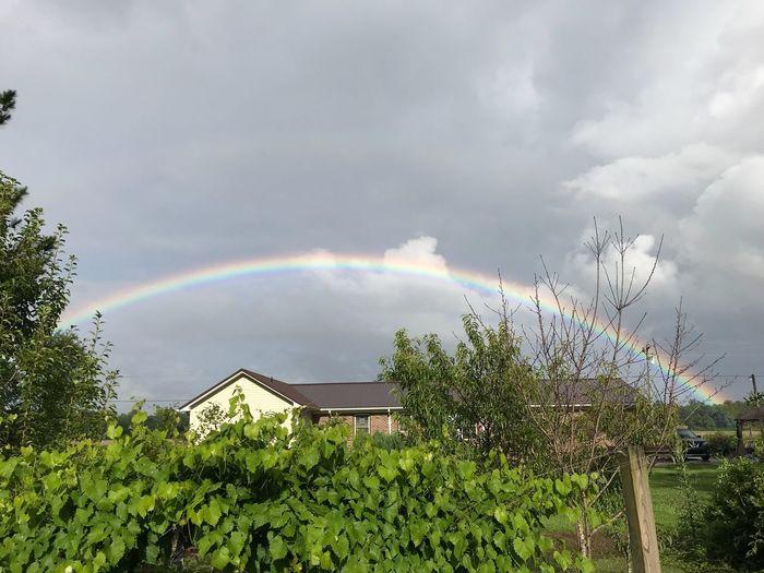 Rainbow in the