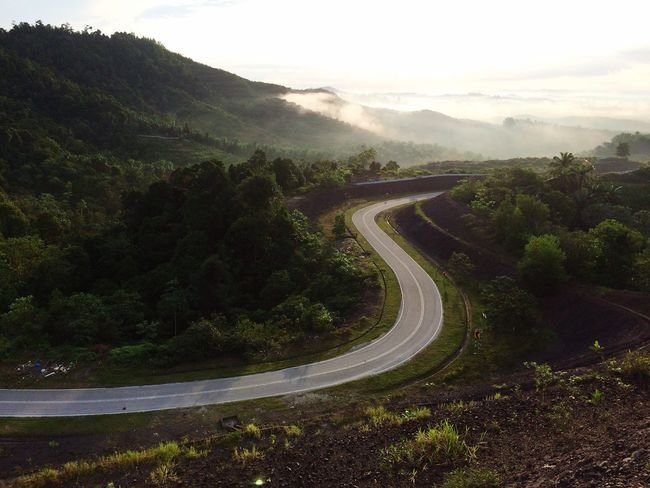 Road Mountain Winding Road Transportation Curve Nature Landscape Beauty In Nature Tranquility Tranquil Scene No People Scenics Mountain Range The Way Forward Mountain Road Outdoors Tree Day Sky EyeEmNewHere