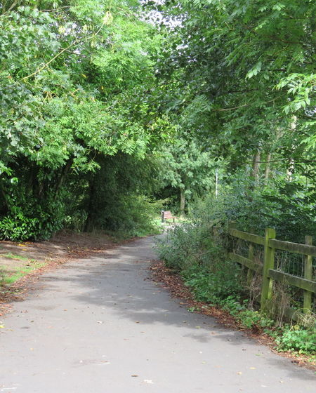 Footpath by the