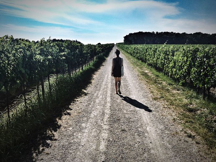 Rear view of woman walking on dirt path in winery