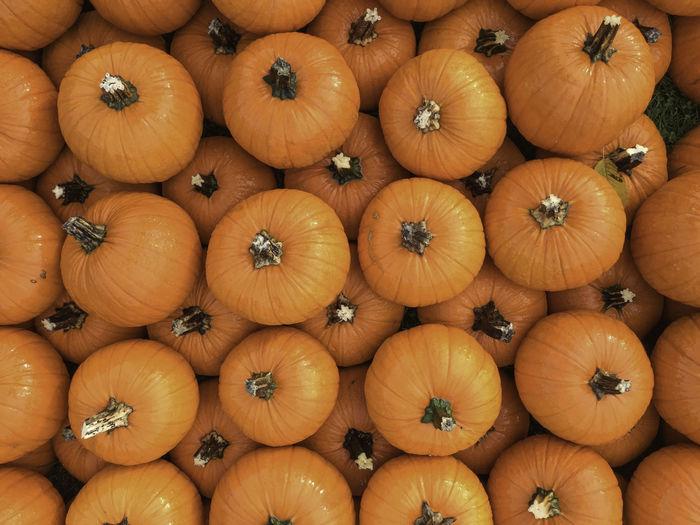 Full frame shot of pumpkins in market