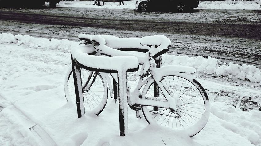 Bicycle Transportation Land Vehicle Mode Of Transport Stationary Day Outdoors No People Nature snow cold parking