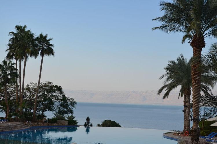 hotel Middle East Jordan Middle East Ressort Hotel Moevenpick Spa Jordan Vacations Dead Sea  Hotel View Infinity Pool