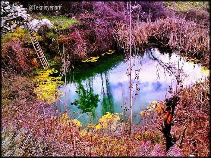 Yayladaki evimin yanında bir gölet alabalık salmayı düşünüyorum 🐟🐟😊👍📷 ⭐Arma mahallesi kaş⭐ I think a trout pond near my home feed.🐟🐟😊👍📷 ⭐Arma plateu kaş/antalya⭐ 01✏Armayaylasıkaş 02✏Plateu 03✏Golet 04✏Alabalık 05✏Lake