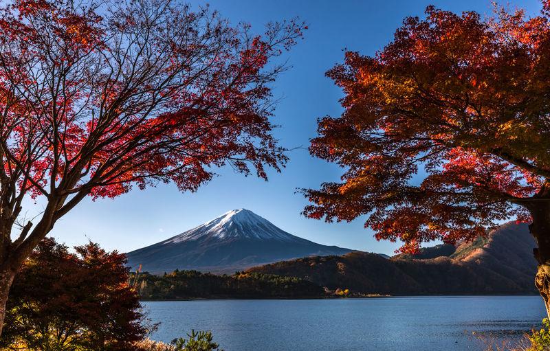 [ Mt Fuji