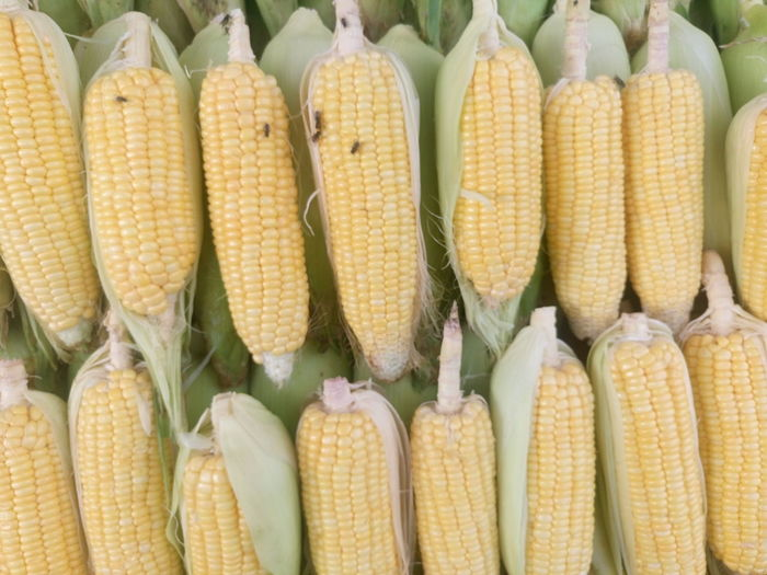 Directly above shot of corns for sale at market