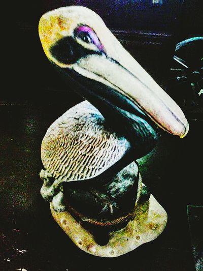 Animal Themes Animal Head  No People Beak PerspectiveShot Softness Pattern, Texture, Shape And Form Vibrant Color Creativity Man Made Object Pelican HandPainted StillLife StillLifePhotos