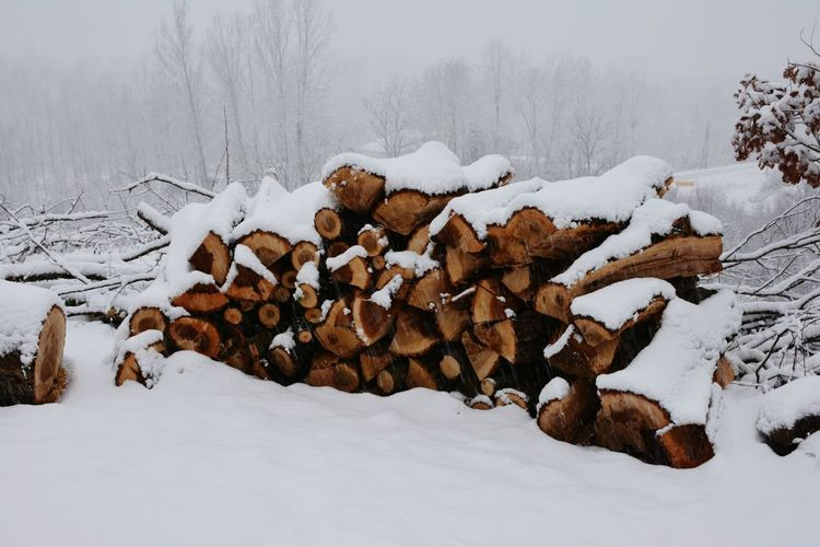 Snow Winter Cold Temperature Weather Nature Stack No People Outdoors Beauty In Nature Day Tree Snowing Wood Wood Chopping Heating Material Serbia Village Life Balta Berilovac East Serbia Stara Planina Village Scene Tranquil Scene The Great Outdoors - 2017 EyeEm Awards