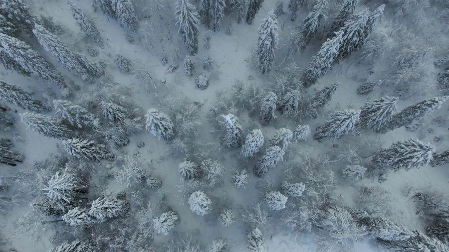 Full frame shot of frozen ice