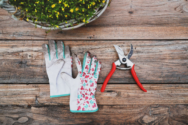 Cut Gardening Scissor Scissors Close-up Directly Above Equipment Garden Gloves High Angle View Indoors  No People Potting Soil Secateurs Still Life Table Wood - Material Work Tool