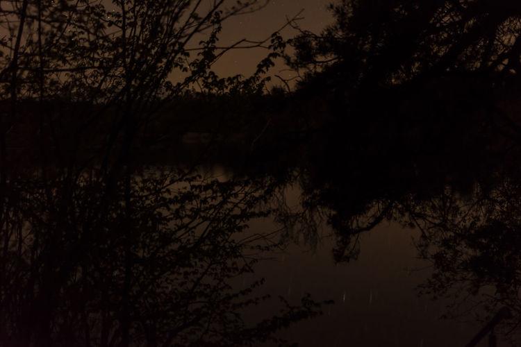 Abtsdofer See Bayern Germany Lake Lake View Night Nightphotography