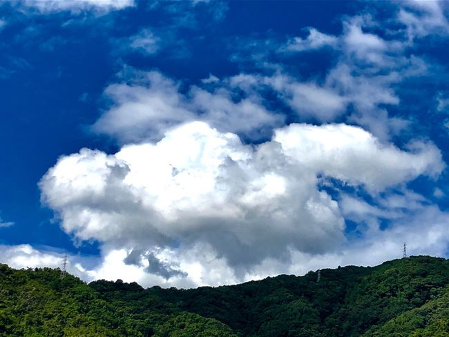 A Huge Mass of Cumulus Clouds over the Mountains. (180821-181003) Cloud - Sky Sky Beauty In Nature Scenics - Nature Day Nature Low Angle View Environment Land Landscape Non-urban Scene Plant Tree Growth Blue White Color Tranquility Tranquil Scene Outdoors No People