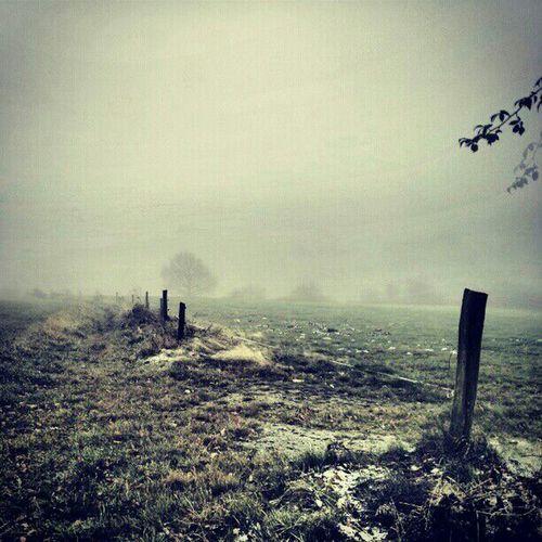 Waschküchenwetter Nature Walking Foggy Day Landscape_Collection