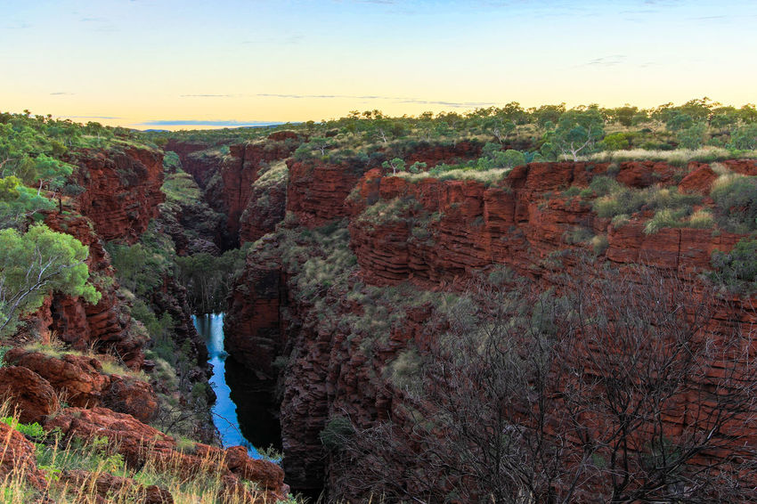 Joffre Gorge, Karijini National Park Australia Australian EyeEm Best Shots Green Rock Formation The Week On EyeEm Travel Beauty In Nature Clear Sky Day Landscape Mountain Nature No People Outdoors Red Rock Formation Scenics Sky Sunrise Tranquil Scene Tranquility Travel Destinations Tree Water
