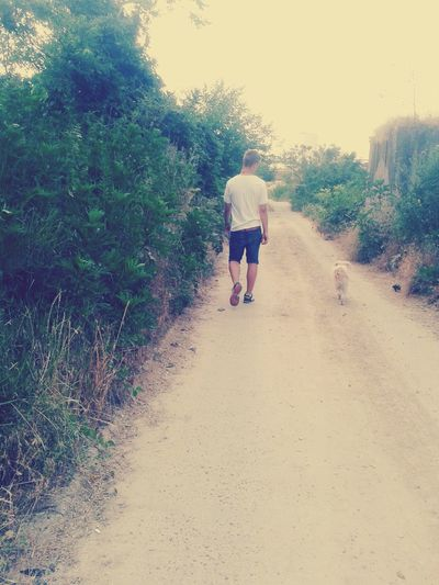he's my Best Friend and I Love My Dog Walking Around On The Road ♥
