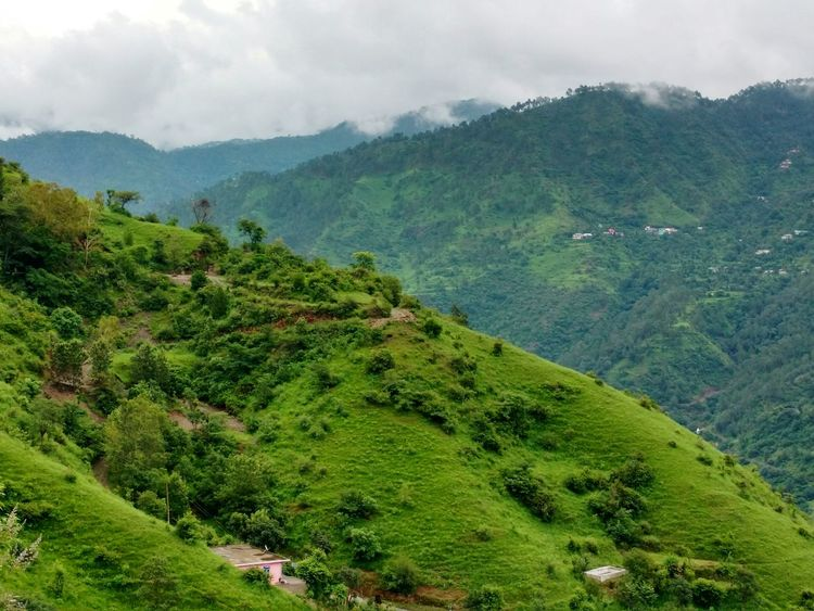 Nature Landscape Tree Growth Beauty In Nature Green Color Agriculture Tranquil Scene Mountain Scenics Lush - Description Outdoors No People Day Nature Sky Hills Hillside Hills And Valleys Hills, Mountains, Sky, Clouds, Sun, River, Limpid, Blue, Earth Hillscape Hillview HillTopView Sadhupul Beauty In Nature
