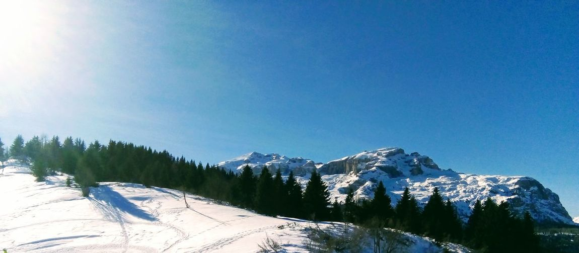 Montagne delle Dolomiti (5) Dolomites, Italy Skiing Tree Mountain Snow Winter Cold Temperature Forest Clear Sky Pine Tree