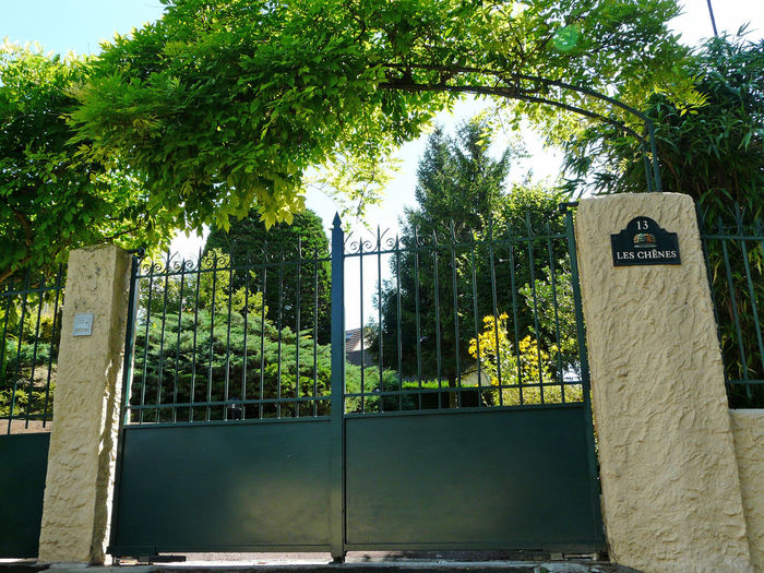 A portal gate with a touch of nature Entrance Gate Arch Of Vegetation Bright Halo Entranceway Green Theme Green Portal Nature Theme Portal Glycine Wistaria Glyzinie @Ced_u26CC_BY_ND Eyeem Market