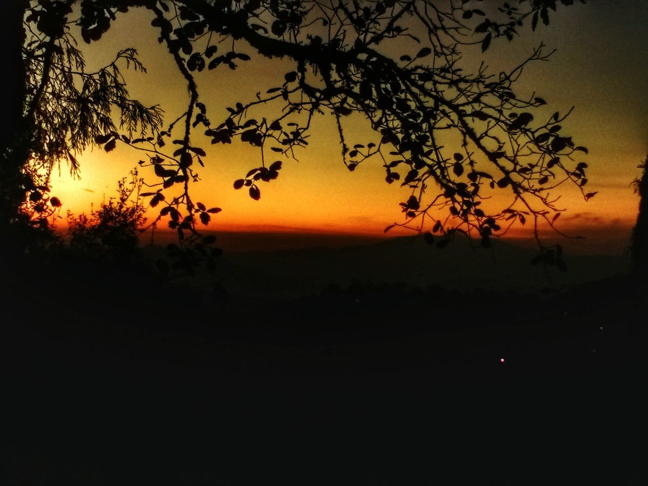 sunset, nature, silhouette, landscape, tree, sky, beauty in nature, scenics, tranquility, no people, outdoors, scenery