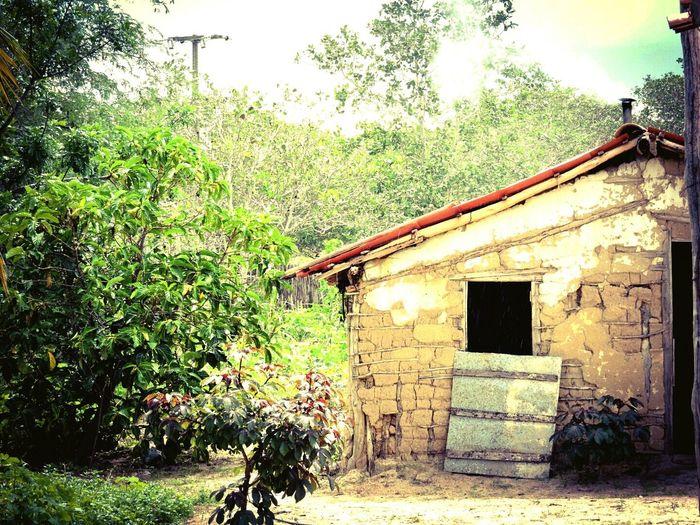 casa em esticão Architecture Built Structure Building Exterior No People Grass Day Outdoors Tree Sky First Eyeem Photo