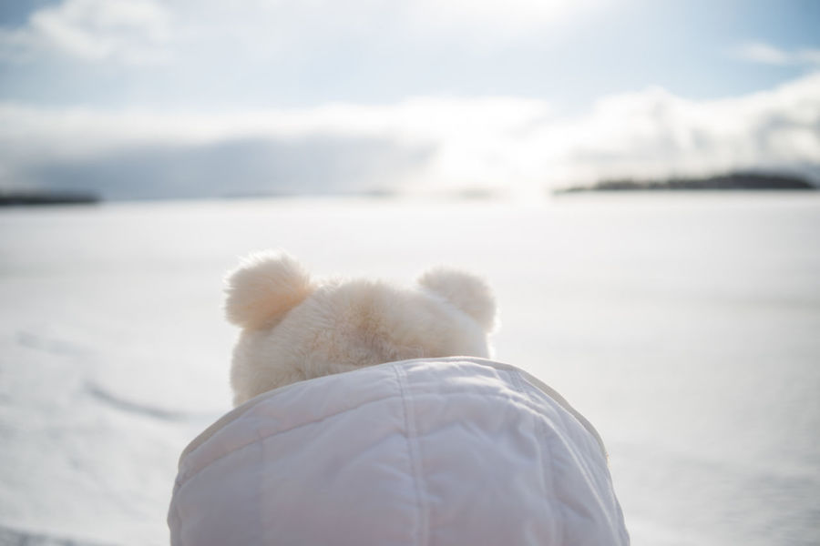 Close-up Day Friendship Frozen Lake Ice Covered  Landscape Nature Outdoors People Rear View Snow Sunny Teddy Bear Teddy Bear Cap Vacations Winter The Great Outdoors - 2017 EyeEm Awards