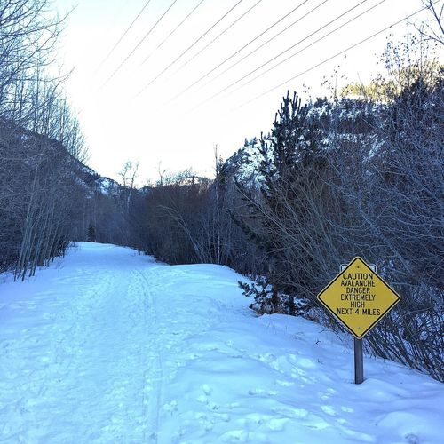 A reminder that even beautiful things come with a warning. Woods Running Winter Trail Trailrunning Colorado Nature Forest Trees Snow Tree Solitude Sunrise Trail Running Mountain Frozen Warning