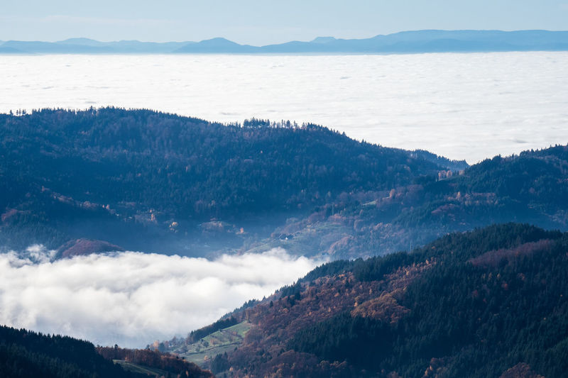 View from the german black forest over the cloud-filled rhine valley to the french vosges mountains