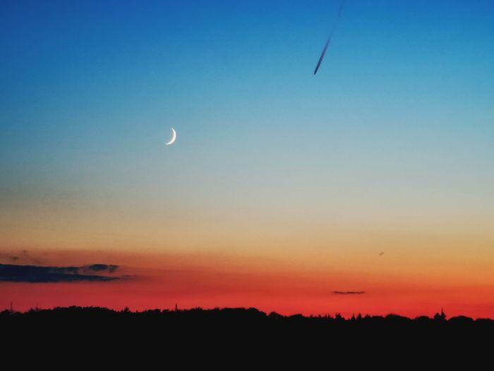 Flying Sunset