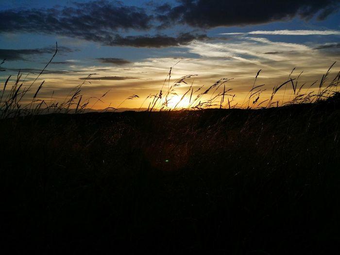 Sunset Taking Photos Hello World Enjoying Life Sundown Nature Setting Sun Setting Germany Fading Fading Light