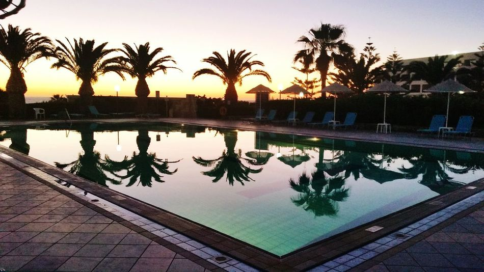 Pool Palm Trees Dawn Crete Island No People Beautiful Place ♥ EyEmNewHere The Week On EyeEm Reflections In The Water Exotic Holidays ☀