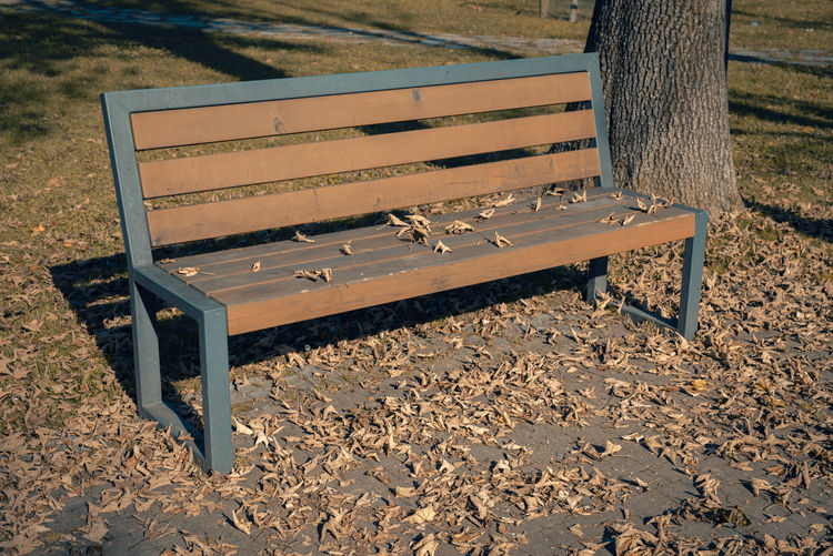 a bench in a park covered with autumn foliage Bench Wood - Material Seat Empty Park Park Bench Absence Nature Land Day Park - Man Made Space No People Tree Sunlight Outdoors Foliage Autumn Fall Fall Colors Fall Beauty Sunlight Tranquility Loneliness Warm Leipzig