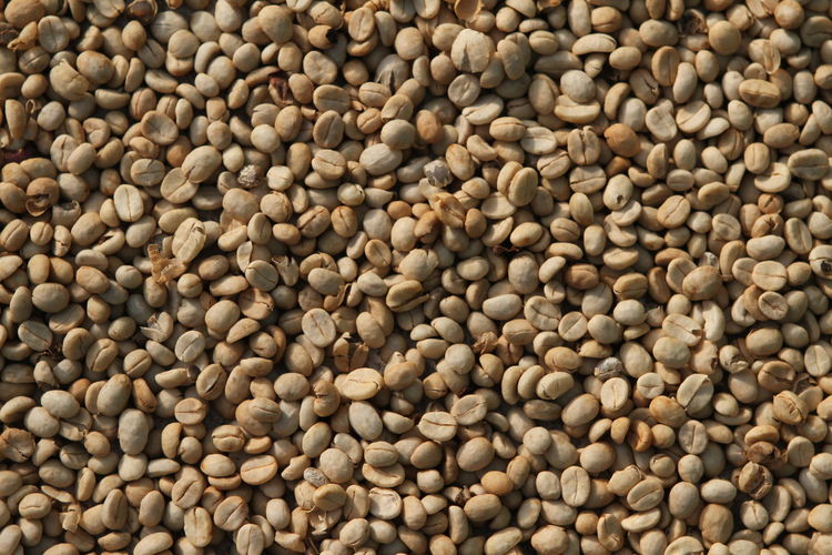 Abundance Close-up Coffee Detail Large Group Of Objects Green Coffee