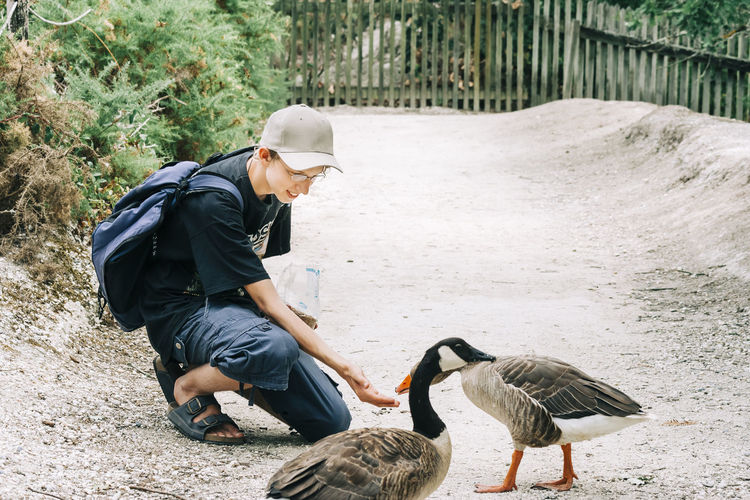 Young woman feeding canada geese