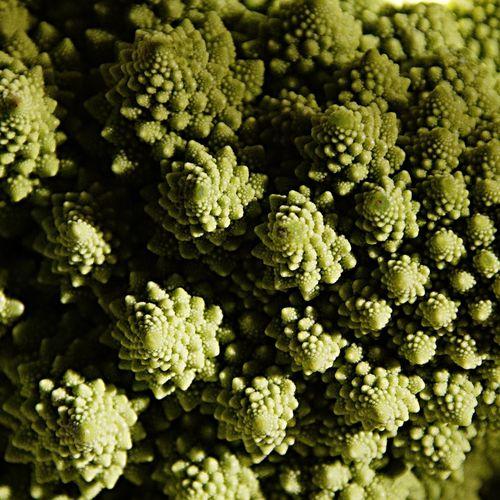 Full frame shot of romanesque broccoli