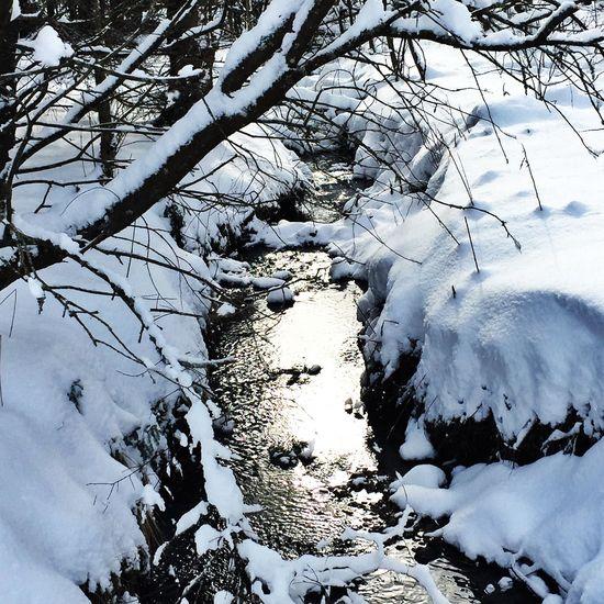 Wasserschnee Winter Wonderland Königsfeld Wanderlust Snowwander