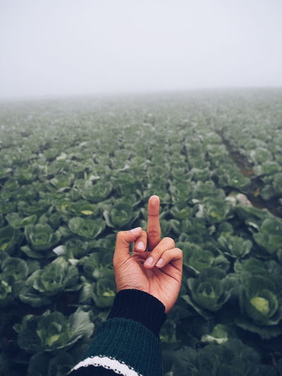 Cropped image of hand showing obscene gesture over agricultural field during foggy weather
