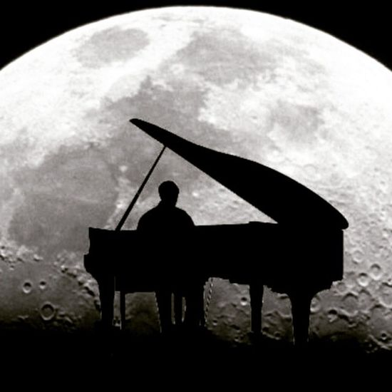 Fly me to the moon and let me sing and play the rhythm Imtheman Iammusician Singasong