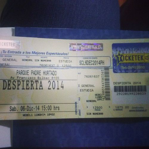 Nos Vamos @Despiertafest!!! @maquitaeditt Nanostern AnitaTijoux Chambao KevinJohansen PerotáChingó