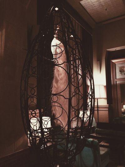 New York Soho Grand In My Hotel
