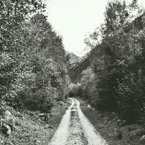 16km and no soul crossed my way Blackandwhite Mognio-Bignasco Tessin And I