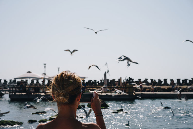 Rear View Of Woman Photographing Seagulls