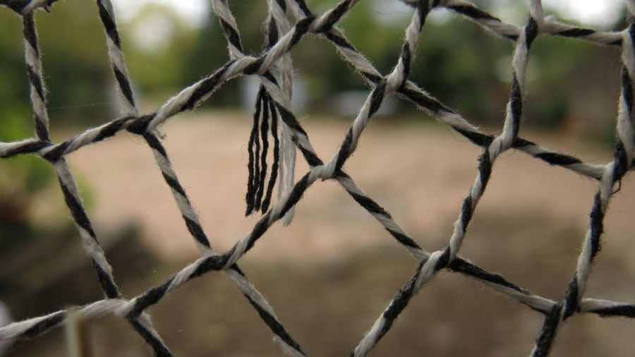 Fence Close-up